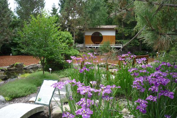 Le Jardin Asahi - 2010