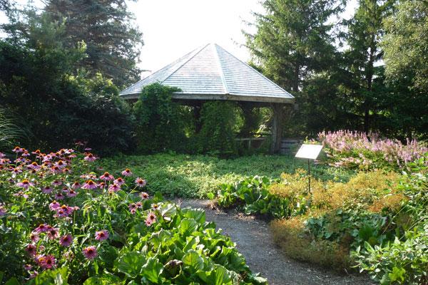 Éco-jardin 180o - 2010