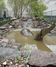 jardin5biologique22