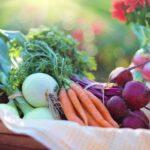 Générations végétales: les variétés ancestrales