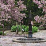 Élixir : jardin médiéval