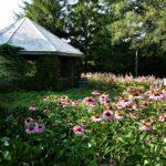 Éco-jardin : 180°